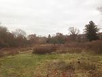 2013-11-17 14.42.05.jpg