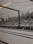 2013-01-16 08.13.06.jpg